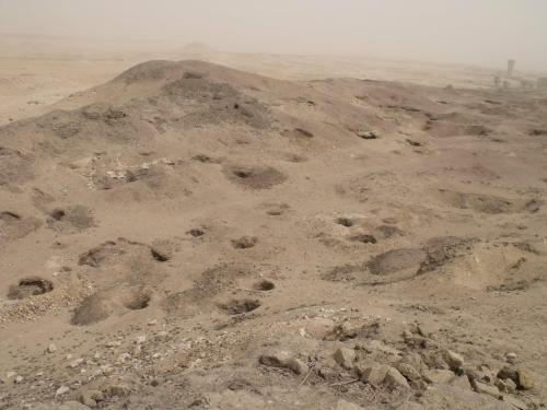 Looter pits are thick on the site at El Hibeh